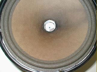 speaker before removal of the tweeter support